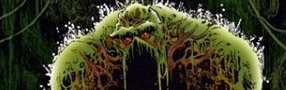 Swamp Thing au ciné et en 3D ?