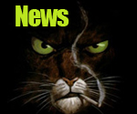 news_blacksad_news