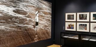 Guibert, Alan et le photographe à l'Académie des beaux-arts